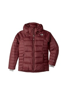 The North Face Double Down Hoodie (Little Kids/Big Kids)