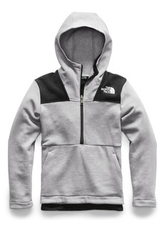 The North Face Linton Park Pullover Hoodie (Big Boys)
