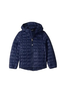 The North Face ThermoBall™ Eco Hoodie (Little Kids/Big Kids)