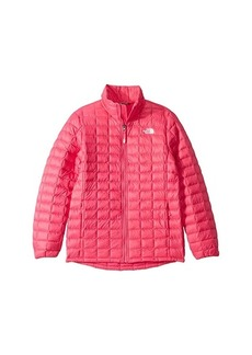 The North Face ThermoBall™ Eco Jacket (Little Kid/Big Kid)