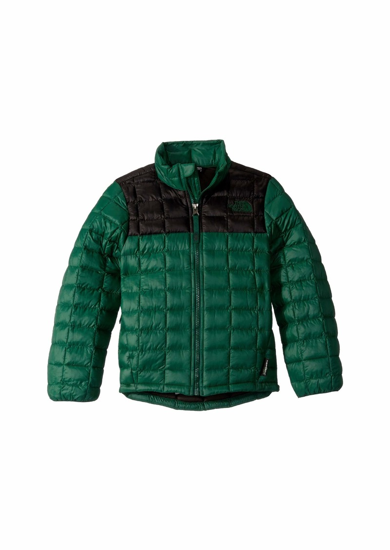 a95786f54 ThermoBall™ Eco Jacket (Little Kids/Big Kids)