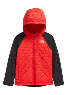 Toddler Boy's The North Face Kids' Quilted Sweater Fleece Hoodie