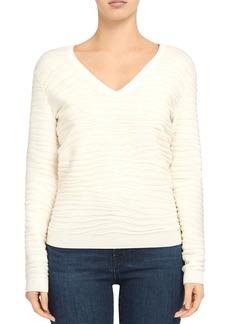 Theory Plush V-Neck Zebra Sweater