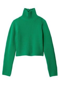 Tibi Technical Turtleneck Sweater