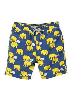 Tom & Teddy Elephant Print Swim Trunks (Men, Toddler, Little Boys, & Big Boys)