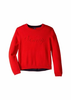 Tommy Hilfiger Long Sleeve Boylan Sweater (Little Kids/Big Kids)