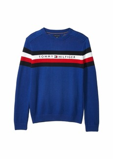 Tommy Hilfiger Signature Crew Neck Sweater (Little Kids/Big Kids)