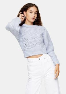Topshop Clothing /Sweaters Knits /Mix Slv Pretty Jmpr