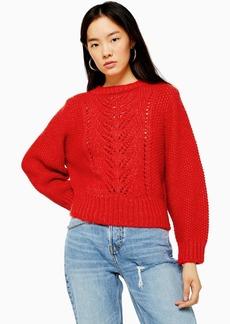 Topshop Knitted Pointelle Crop Jumper