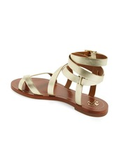 9ae0d2ea3ed0 Tory Burch Tory Burch Patos Flat Gladiator Sandal (Women)
