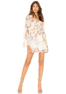 Tularosa Robin Dress