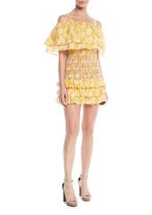 Tularosa roma smocked floral ruffle dress abv6ac94ae9 a