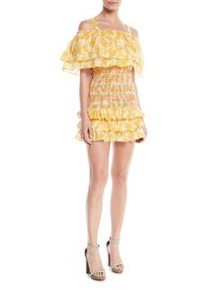 Tularosa Roma Smocked Floral Ruffle Dress