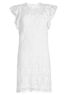 Velvet by Graham & Spencer Ally Lace Dress