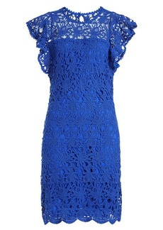 Velvet by Graham & Spencer Ally Lace Dress