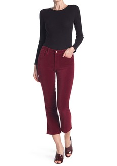 Velvet by Graham & Spencer Jeans