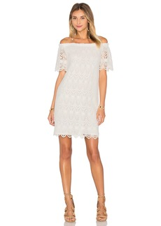 Velvet by Graham & Spencer Gustina Cotton Lace Shift Dress