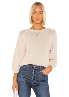 Velvet by Graham & Spencer Yara Sweater