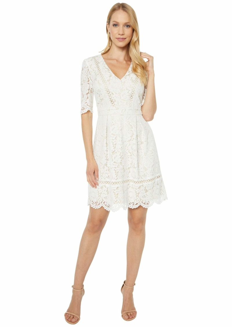 Vince Camuto Lace Fit-and-Flare with Scallop at Elbow Sleeve and Skirt and Trim Detail