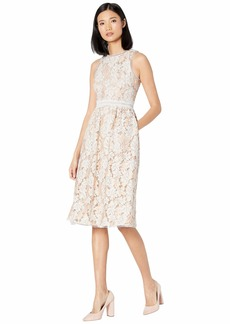 Vince Camuto Lace Midi with Trim