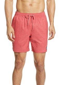 vineyard vines Chappy Stripe Swim Trunks