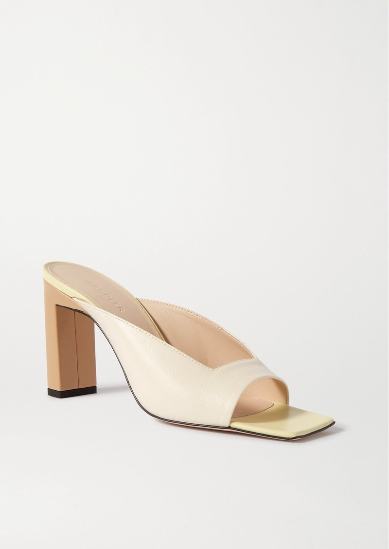 Isa Color-block Leather Mules