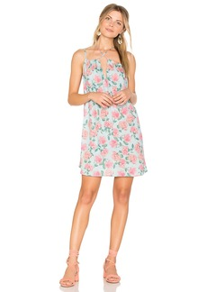 Wildfox Couture Dusty Rose Print Lily Slip Dress