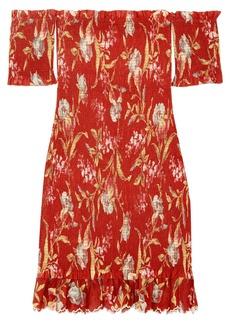 Zimmermann Corsair off-the-shoulder shirred printed linen and cotton-blend dress