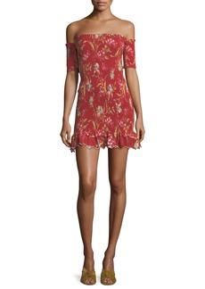 Zimmermann Corsair Shirred Flutter Floral-Print Dress