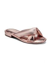 Aerosoles Jordan Slide Sandal (Women)