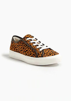Ann Taylor Charisse Leopard Print Haircalf Lace Up Sneakers