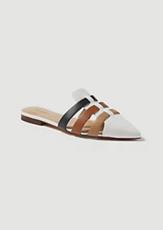 Ann Taylor Sydnee Colorblock Leather Pointy Toe Slides