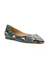 Botkier Annika Pointed Toe Flat (Women)