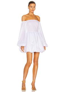 Caroline Constas Georgina Dress