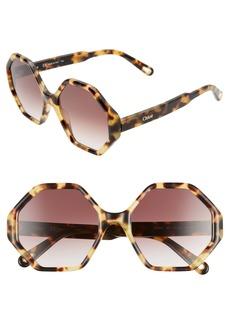 Chloé Willow 55mm Octagonal Sunglasses