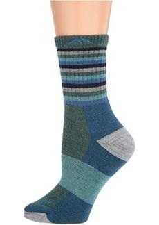 Darn Tough Merino Wool Micro Crew Stripes Cushion Socks