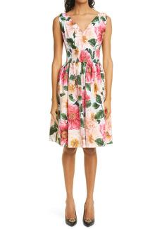 Dolce & Gabbana Dolce&Gabbana Camellia Print Cotton Poplin Fit & Flare Dress
