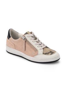 Dolce Vita Miya Zip Detail Sneaker (Women)