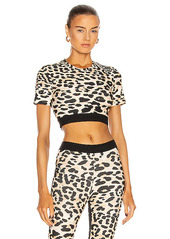 PACO RABANNE Printed Crop Top