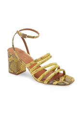 Paris Texas Carla Snake Embossed Ankle Strap Sandal (Women)