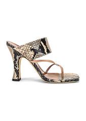Paris Texas Python Print Crossover Thong Sandal