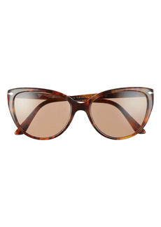 Persol 55mm Polarized Sunglasses