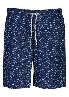 Snapper Rock Blue Swell Swim Trunks (Big Boy)
