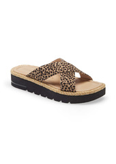 Stuart Weitzman Roza Lift Slide Sandal (Women)