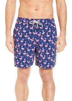 Men's Tom & Teddy Flamingo Print Swim Trunks