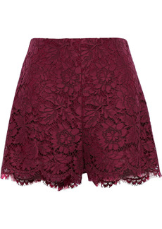 Valentino Woman Cotton-blend Corded Lace Shorts Burgundy