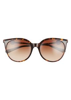 Versace Havana 55mm Gradient Round Sunglasses